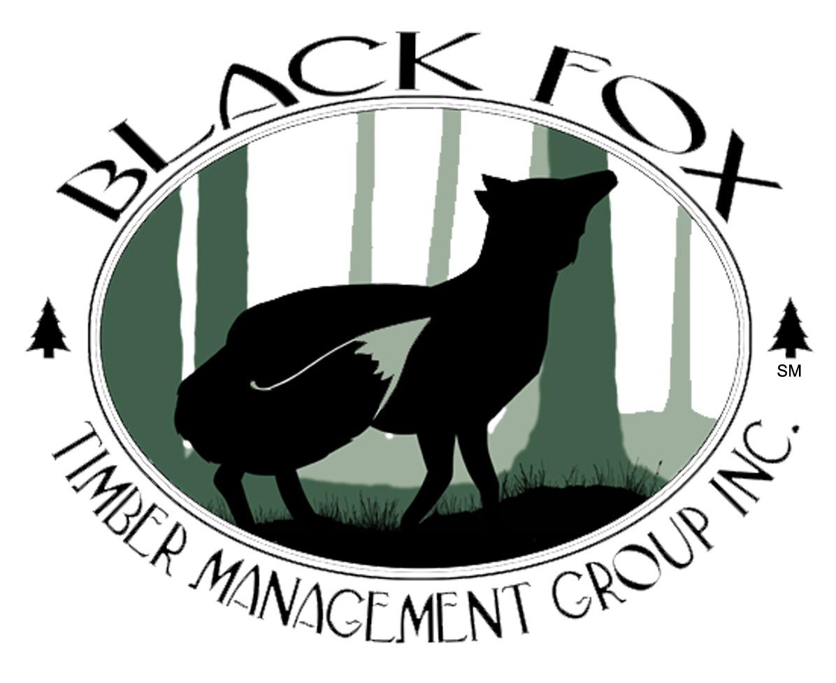 Blackfox Logo